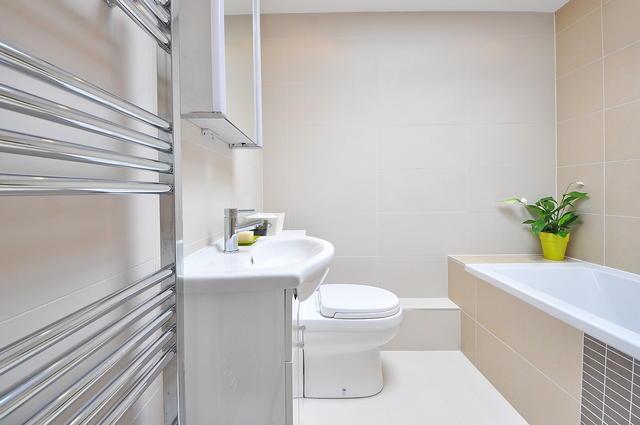 Grzejniki łazienkowe - kiedy wybrać tradycyjny grzejnik drabinkowy, a kiedy poziomy?